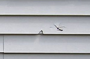 siding repair company Long Island, NY